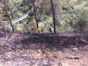 שריפה שהתרחשה במהלך שנת 2014 בפארק הכרמל. יוצרים חיץ בין היערות לבתי התושבים. צילום: עיריית נשר