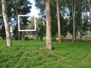 הפנינג אומניות ומחזור בגן הלאומי ירקון תל אפק- צילום יחצ