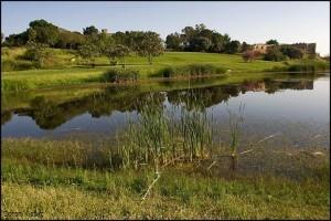 גן לאומי ירקון קרדיט צילום רשות שמורות הטבע והגנים