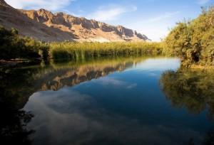 שמורת טבע עיינות צוקים קרדיט צילום רשות הטבע והגנים