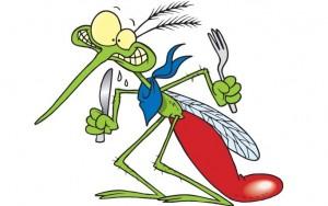 הטיפול היעיל ביותר למניעת מטרדי יתושים הוא טיפול במקומות הדגירה