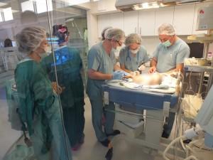 """צוות ביה""""ח כרמל בניתוח הפג בחדר החדש. צילום: אלי דדון"""