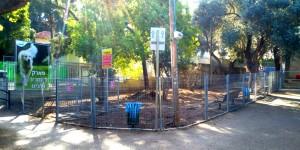 במקביל להכשרת הגינות נמשכת פעילות האכיפה הנמרצת של העירייה נגד בעליהם של כלבים משוטטים וכלבים העושים את צרכיהם ברשות הרבים