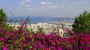 חיפה והקריות הם אזורים המאפשרים טיולים בין טבע לעיר, בדרגת קושי לכל הגילאים. צילום: pixabay